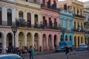 Cal Havana Arch
